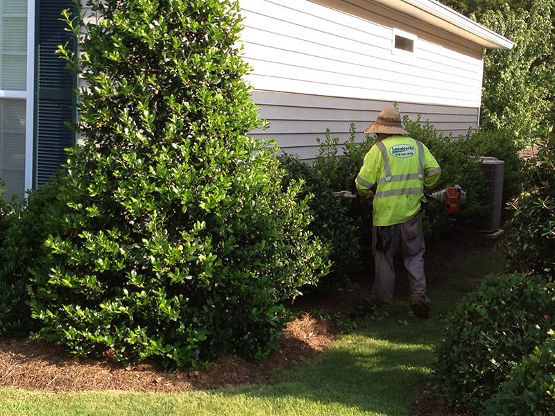 Landscape Maintenance LawnWorks of Macon GA