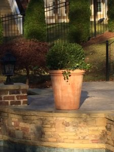 flower planters in macon, ga
